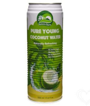 Água de Coco Natural 520ml