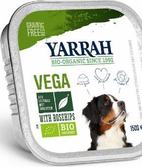 Patê de legumes para cães - Vegan e Bio